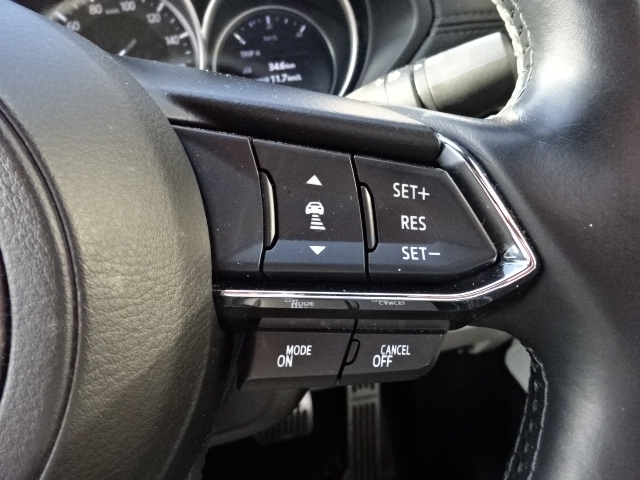 ミリ波レーダーで先行車の速度や車間距離を認識して、ドライバーがアクセルやブレーキを操作しなくても設定した車間距離を維持し、車両の速度をコントロールしてくれます。追従可能な速度は約30~115km/h。