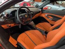 Interio special leather Orenge