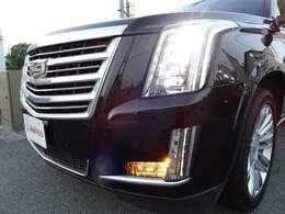 特徴的なデザインのクリスタルレンズとLEDが施されたヘッドライトとフロントのグリル。