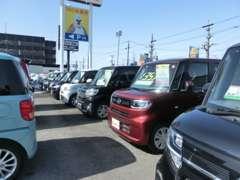 函館店在庫車は約100台!他店から無料でお取り寄せできますので約1100台からお選びいただけます!