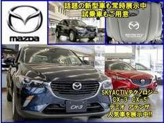 新車も中古車も【北海道マツダ】へお越し下さい!ショールームには人気車を展示中!各車のカタログもご用意しています!