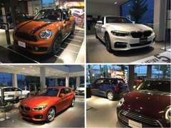 店内には、BMWの新型車とMINIの新型車を常時展示しております。カタログをご希望のお客様は気軽にお声掛け下さい。