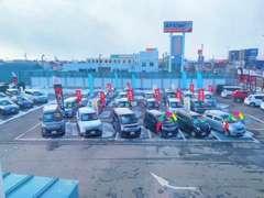 軽自動車からSUVまで、幅広い中古車を60台展示しております。