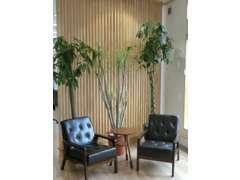 カフェ調の店内は、観葉植物を多く配置し、癒しの空間です!ごゆっくりおくつろぎ下さいませ!