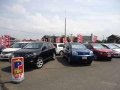 クーペ、ミニバン、SUV、いろんな車を見られるのも中古車選びの楽しみですよね♪車種選びに迷ったらまずはTAX板付へ!