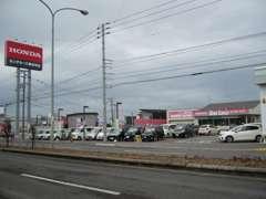 函館産業道路沿い、山岡屋・マクドナルドの並び、パチンコベガスベガスの向かいになります。