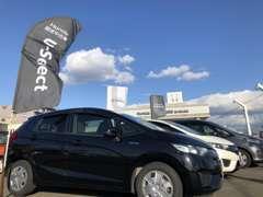 当店は国道36号線沿い、JR苫小牧駅より車で10分ほどにございます。道央自動車道で来られる方は苫小牧東インターをご利用下さい。