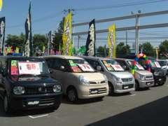 常時在庫数50台超!軽自動車やミニバン・セダンや輸入車など、多彩な車種でお客様をお待ちしています☆