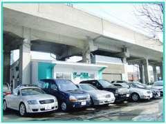 輸入車のコンパクトからセダン、SUV、クーペまで幅広く取扱いしております。