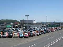 JU「中古自動車販売士」のいるお店!常時270台展示中!軽自動車も各種、力を入れて取り揃えていますのでぜひご覧下さい!
