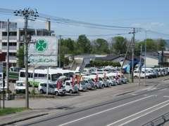 各種トラックなど多数展示しています!サクシードVやカローラVのディーゼル車も常時展示しています!