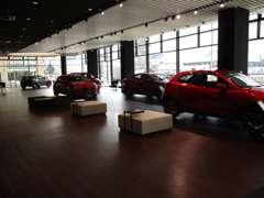 ショールームには話題の新型車を多数展示!