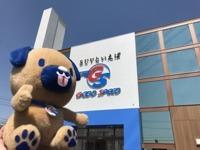 グッドスピード MEGA SUV 東海名和店