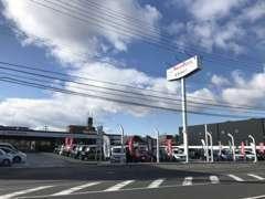 展示場には100台の厳選ホンダ車を展示しています。お体の不自由なお客様専用の駐車スペースを確保しています。