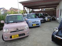 届出済未使用車の軽自動車も取り扱っております。女性のお客様も多数ご来店頂いております。