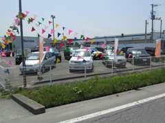 フォード・マツダのお車を中心に、他メーカーの特選中古車も展示中です!