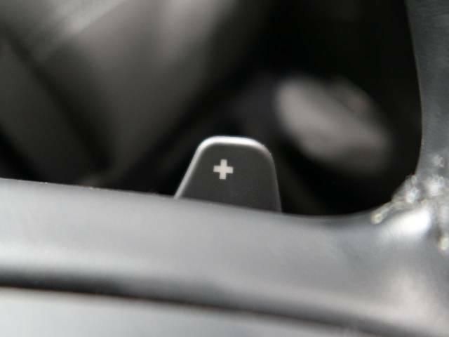 ステアリングパドルシフト『クイックなシフト操作が可能!レスポンスが高く、運転者様のギア変則にしっかりとついてきてくれます!ジャガーと一体となれる装備です。』