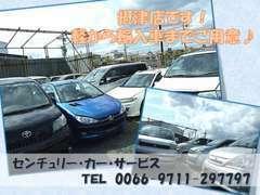 摂津支店です。こちらでも軽自動車、軽トラック、ミニバン、普通車、輸入車など多数取り揃えております。
