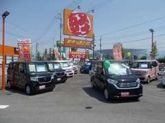 セダンタイプ・ワゴンタイプ・スライドタイプとタイプ別に見やすく車両を展示しております!