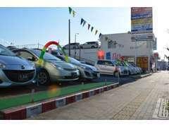 展示在庫約50台。マツダ車以外の在庫も豊富です。