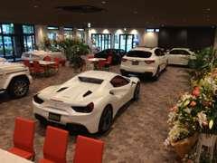 仕入れ担当、選りすぐりの上質輸入車を展示しております。お気に入りの1台をお選び頂けます。
