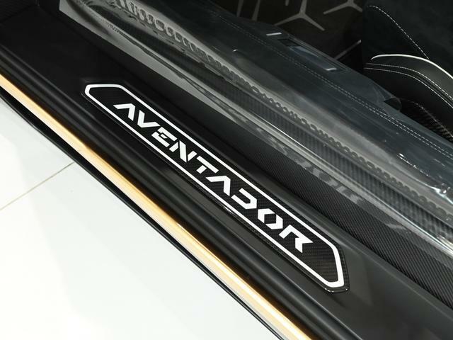 キックプレートと呼ばれるプレート部には「Aventador」の文字が装飾されております。