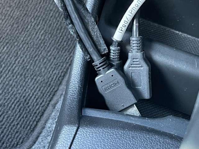 ナビ用のUSB入力が2本とHDMI入力端子1本になります。