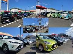 展示台数約120台を誇る大型展示場です。豊富な在庫からお客様にあったお車をお選びいただけます。