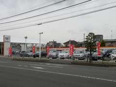 こちらが展示場です。ご来店の際、隣新車店舗スペースにも駐車可能ですので、気兼ねなくお乗り付けください!