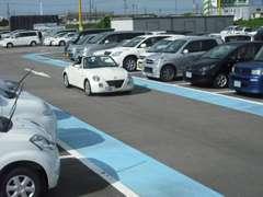 試乗コースを設置しており、展示車全車試乗できます!お気軽にお申し付けください。