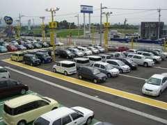 広~い展示場に沢山の車が展示してあります!!