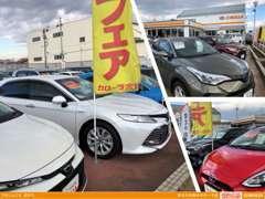 新車の試乗車の他、中古車の展示も多数取り扱い。他店舗の在庫も取り扱いできます!