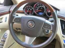 クルーズコントロールはステアリングのボタンで操作します。外車はこのタイプが多いですね