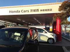 新車展示、試乗車もございます。高性能車が続々登場しています!