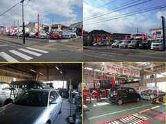 桔梗店の他に本社展示場・自社板金工場・自社整備工場・提携先大手整備工場とお車に関する事はトータルにカバーしています。