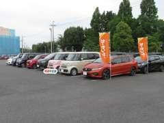 30台規模の展示場に試乗車や下取り車を中心とした高品質なU-Carを取り揃えております。