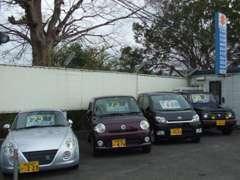当店にお探しのお車がない場合は、注文販売も承っておりますので、お気軽にご相談下さい!