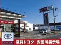 滋賀トヨタ自動車株式会社 Wi-Wi Adogawa