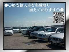 ■展示場に無いお車もお親身にお探しします♪