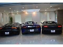 厳選車、ショールームにて展示中です。   TEL  047-496-0080