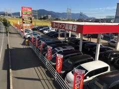 軽自動車から輸入車まで、貴方の1台を・・・。1年無料保証付