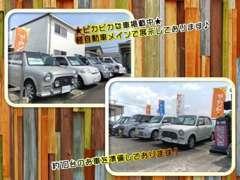 良質な軽自動車を取り揃えております!ご希望の車種などあればぜひご連絡下さい。