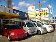 国産車だけでなく御値打ちな輸入車も展示している場合がございます!