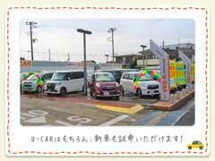 展示車数は40台以上で在庫が豊富です。千葉県内の他店舗U-CARからもお探し致します。