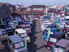 ★軽自動車専門店★関西最大級120台以上の在庫数!人気の車種たくさんございます♪在庫のないお車もお探しいたします!!
