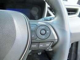 クルーズコントロールが付いているので、高速道路での長距離運転が楽になりますね!