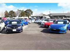 厳選した車両を常時200台からを展示!