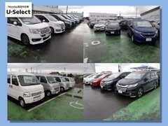 話題のフリード、オデッセイ、ステップワゴンなど多数展示中!VTECエンジン搭載のスポーツカーも多数揃えております!!