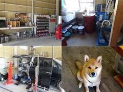 自社整備工場/無料代車/犬/など完備して、購入後も安心してお付き合いをして頂けるようなお店を目指しています