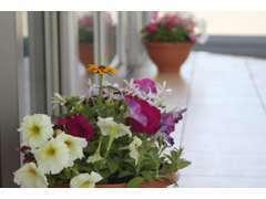 入り口には季節に合わせたお花がお出迎え致します♪